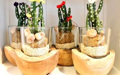Dekoartikel aus der Frühjahrsaustellung 2014 - Kaktus