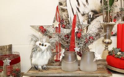 Dekoartikel aus der Rot-Weiß-Kollektion der Weihnachts-Ausstellung 2015  - Stern - Christbaumkugel - Stern - Eule - Windlichtglas