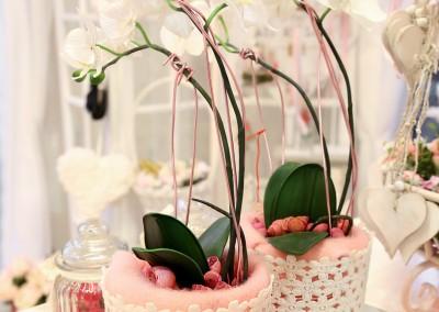 Dekoartikel der Frühlings-Ausstellung 2016 - Orchidee - Blumentopf