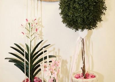 Dekoartikel der Frühlings-Ausstellung 2016 - Orchidee - Blumentopf -Weiß