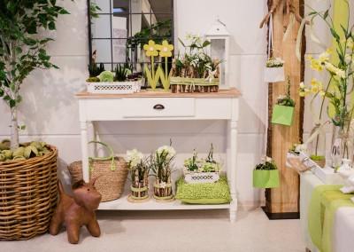 Dekoartikel der Frühlings-Ausstellung 2016 - Grün - Kollektion