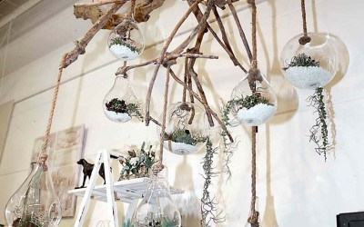 deko_fruehling_ostern_07_vase_succulente