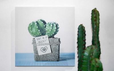 deko_fruehling_ostern_38_kaktus_succulente_bild