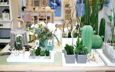 deko_fruehling_ostern_43_kaktus_succulente_topf_vase_keramik