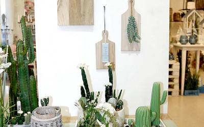 deko_fruehling_ostern_44_kaktus_succulente_topf_vase_keramik_holzbrett