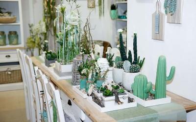 deko_fruehling_ostern_46_kaktus_succulente_topf_vase_keramik