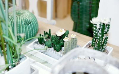 deko_fruehling_ostern_47_kaktus_succulente_betontopf_keramik