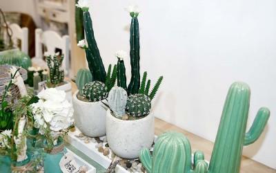 deko_fruehling_ostern_48_kaktus_succulente_betontopf_keramik