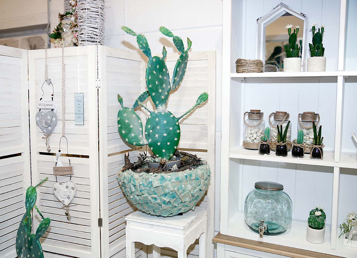 deko fruehling ostern 57 sommerdeko kaktus succulente willenborg dekotrends lifestyle. Black Bedroom Furniture Sets. Home Design Ideas