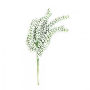 deko-willenborg-succulente-pflanze
